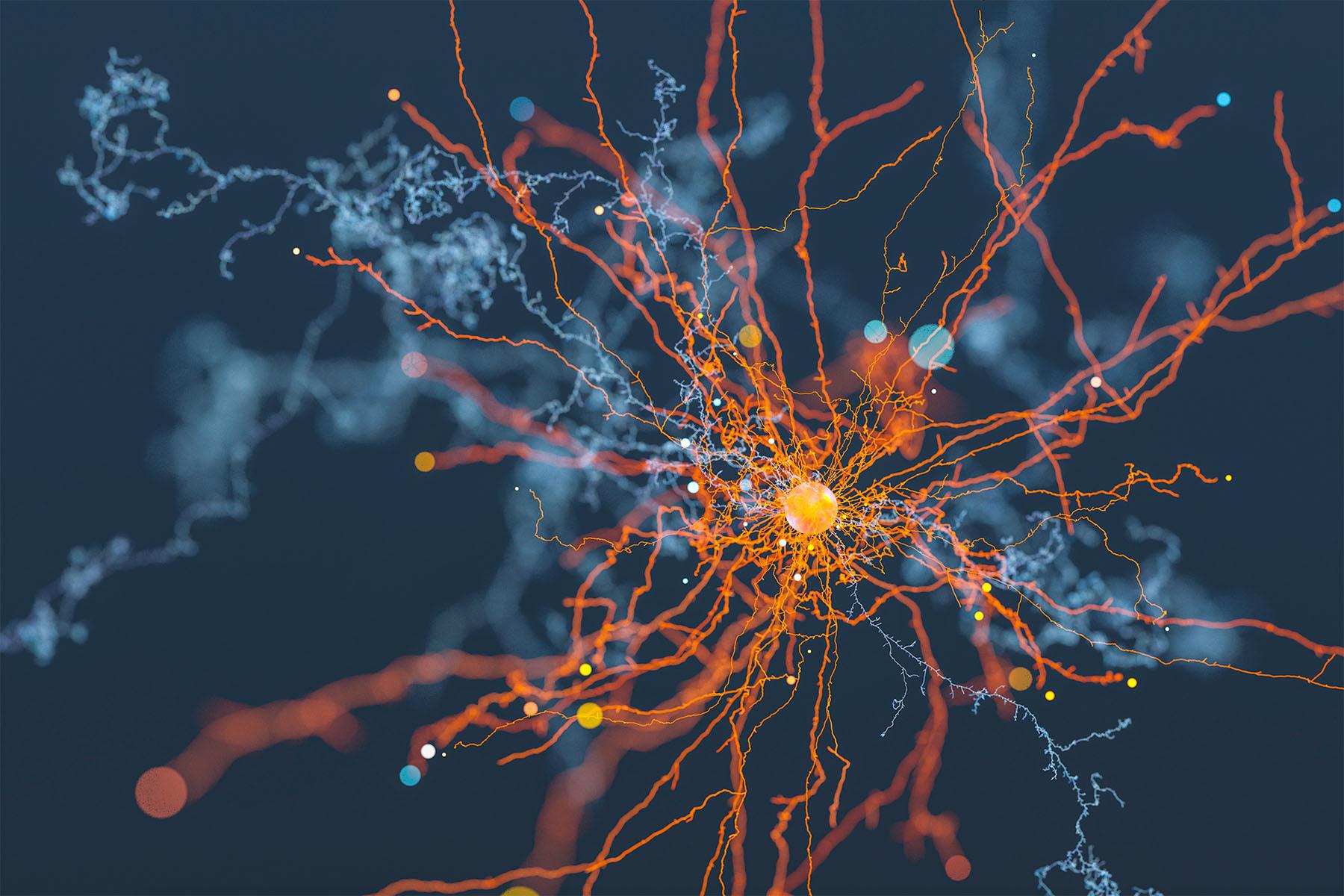 neuron- copy